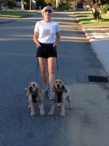 our dogwalker must be fit and strong